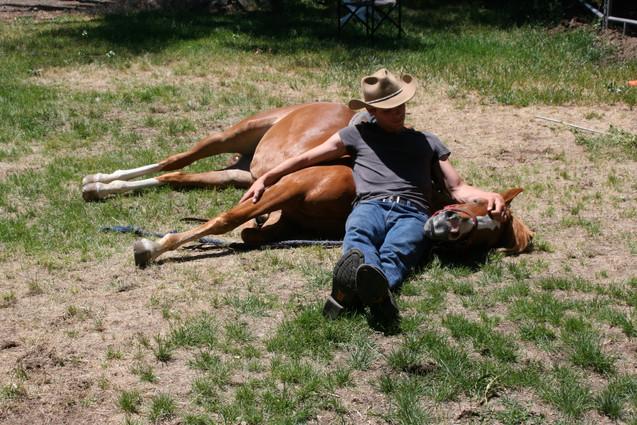 WORKING HORSES 6-25-13 066.JPG