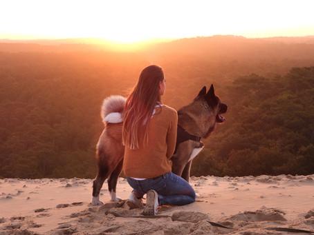 J'ai changé de Vie grâce à mon chien