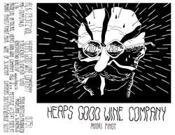 HGWC Modri Pinot
