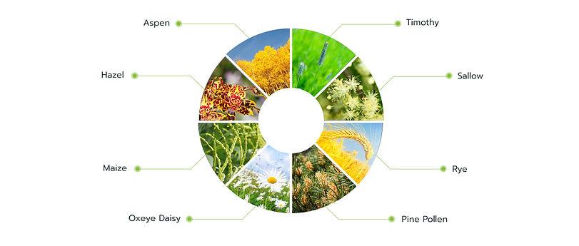 pollen-extract_orig.jpg