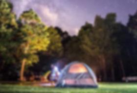 Shenandoah_National_Park_Entries_2016_Co