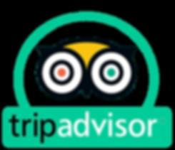 tripadvisor-gorillatrekking adventure sa