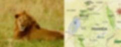 gtas RWANDA .jpg