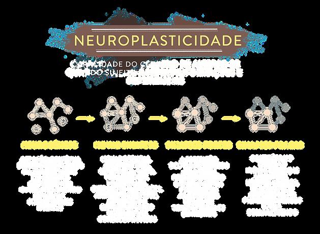 neuroplasticidade.png