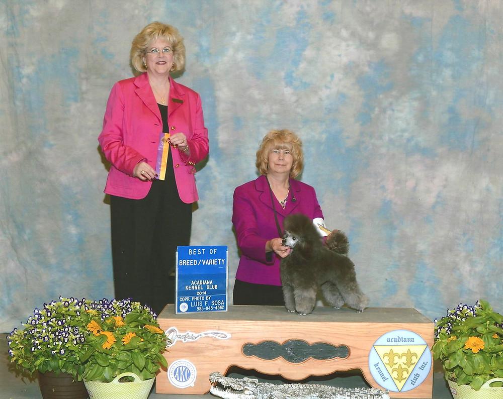 Jagger - Acadiana KC - BV - Mrs Vicki L Abbott 6-6-14 .jpg