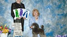 Jagger's Albuquerque NM Show Photos