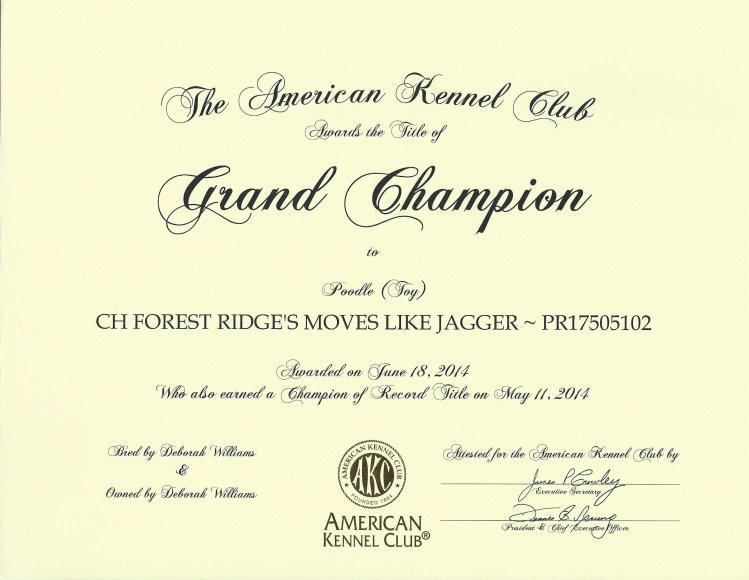 Jagger - GCH certificate F.jpg