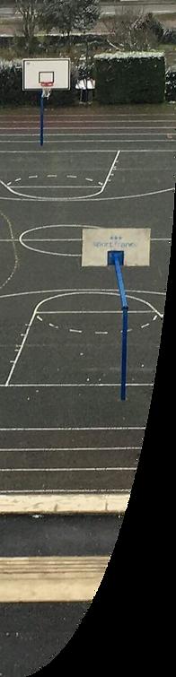 drapeau anneau sportif.png