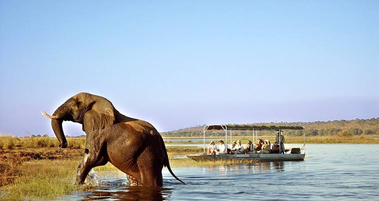 Zambeze River Cruise