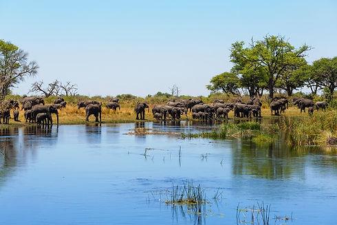 caprivi-strip-namibie.jpg
