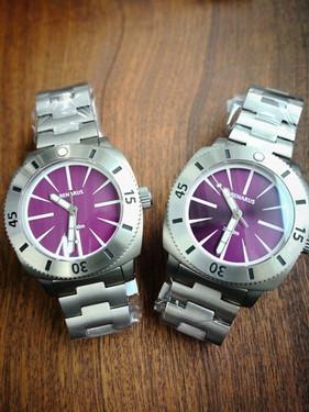 Moray 47 purple ceramic vs sunray dart .