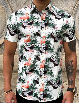Camisa Flamingo Coconut