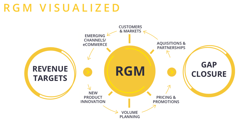 Revenue Growth Management Visualized Graphic