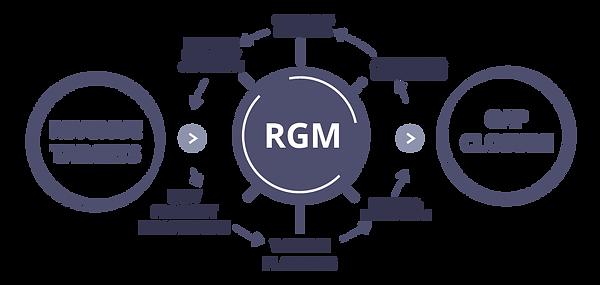 RGM Diagram-15.png
