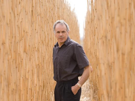 Steve Long: A pioneer in photosynthetic productivity