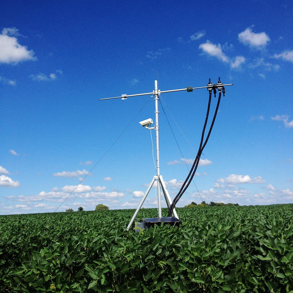 A SIF tower stands in a soybean field.
