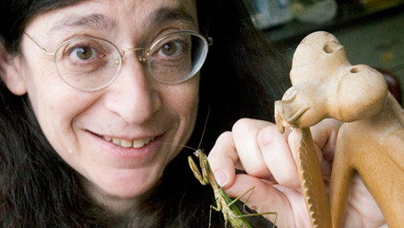 May Berenbaum: Ecologist by training, entomologist by trade