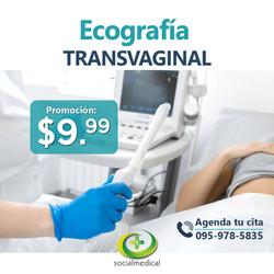 Ecografia Transvaginal