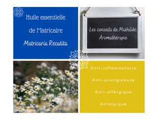 Les conseils de Mathilde: L'huile essentielle de Matricaire, ou Camomille Allemande