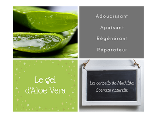 Les conseils naturels de Mathilde: le gel d'Aloe Vera