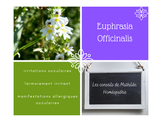 Les conseils de Mathilde: Euphrasia Officinalis