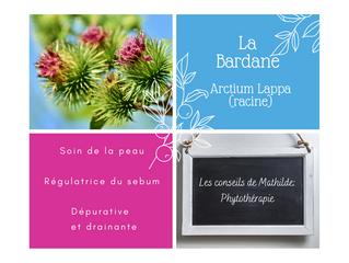 Les conseils de Mathilde: La Bardane