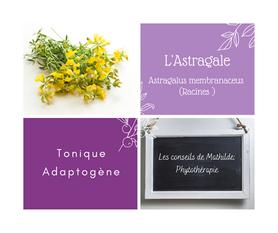 Les conseils de Mathilde: L'Astragale