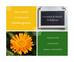 Les conseils de Mathilde: l'huile végétale de Calendula