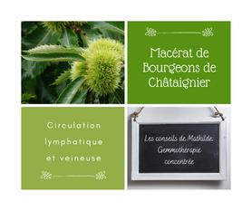 Les conseils de Mathilde: Le macérât concentré de bourgeons de Châtaignier