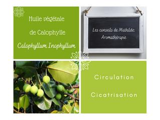 Les conseils de Mathilde: l'huile végétale de Calophylle