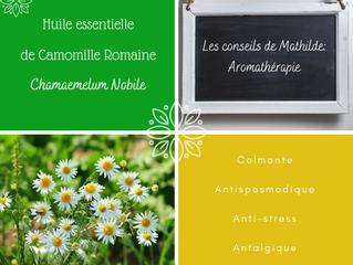Les conseils de Mathilde: l'huile essentielle de Camomille Romaine