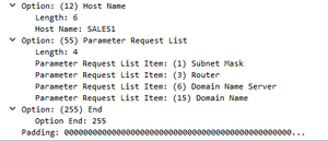 dhcp-request4