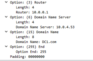 dhcp-ack4