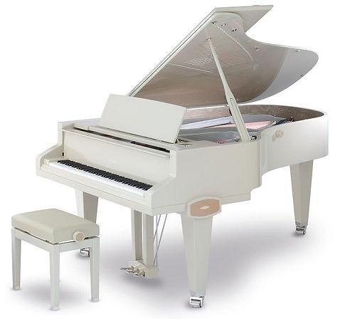 STINGRAY,Atelier Piano, Ladenie klavirov a pianín, Oprava klavírov a pianín, Servis klavírov a pianín, Richard Šulc, mada music, melody shop, piano servis, Drnek piana, Petrof, Hudobné nástroje, Hudobniny, akcia, zadarmo,výhodný nákup, zľava, výpredaj, Muzikus, pianos, Koňuch, klavire eu, muziker, sťahovanie klavirov, bazar, bazos, pirický, opravy hudobných nástrojov, Antonín Petrof, Kizak, Bujnovska, Matovič, Balog, Hupka klavir, Piano studio
