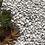 Thumbnail: Otoczak Carrara