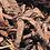Thumbnail: Kora sosnowa