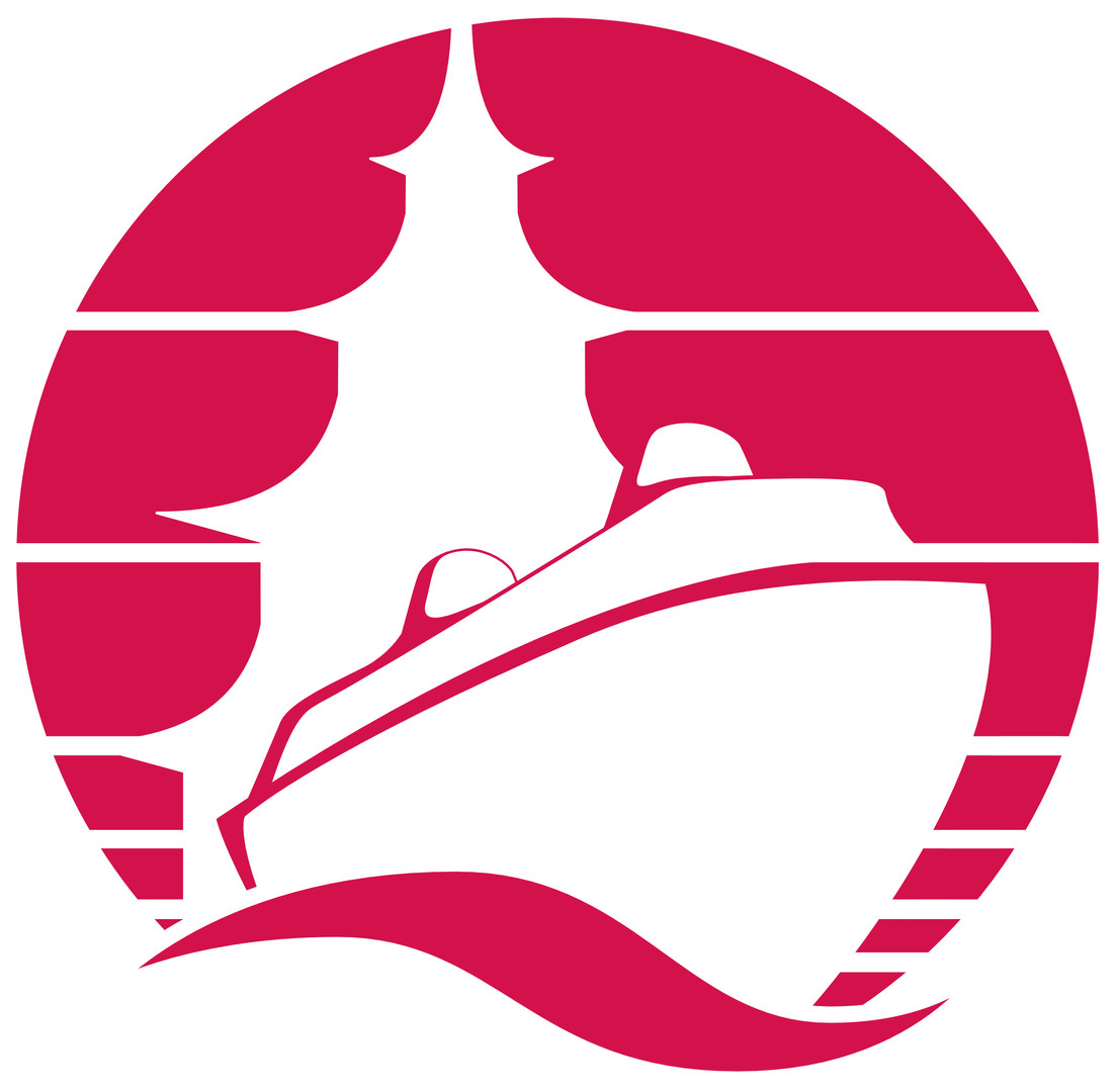 Cruise Excursions Logo
