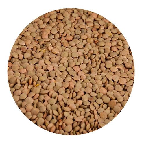 PULSES - Lentils, Brown/Green 500g