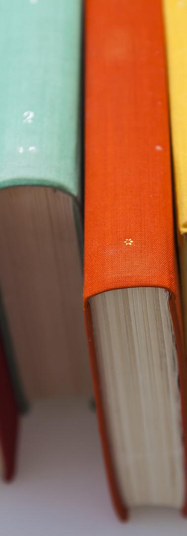 Красочные книги Шипы