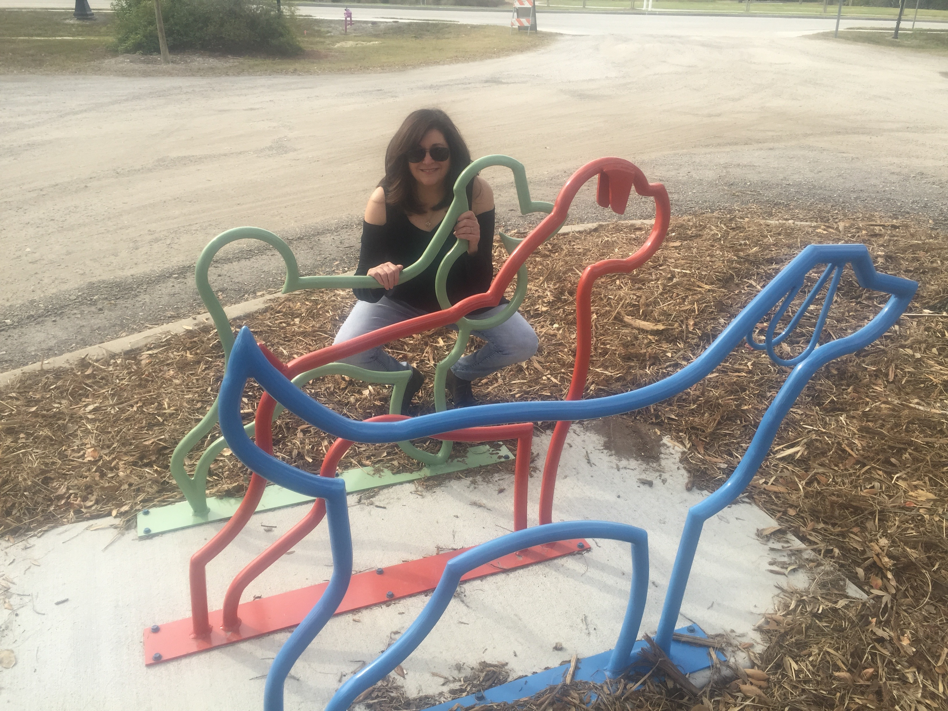 Tarpon Springs bike racks