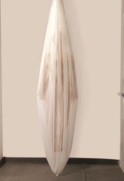 Cocoon Noyes