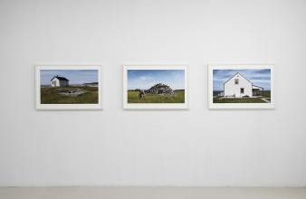 Art in Montreal: Struggles & Innovations