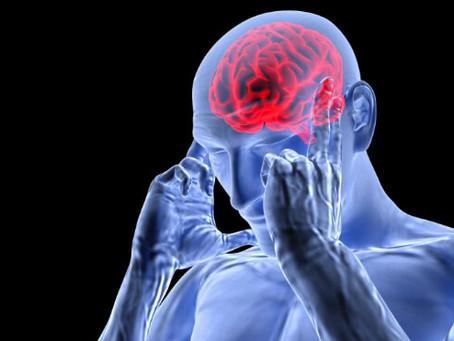 Mold Causes Brain Fog
