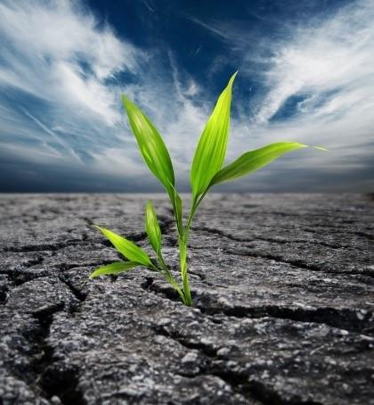 #HealthierMe: Why Resiliency? [series 1/6]