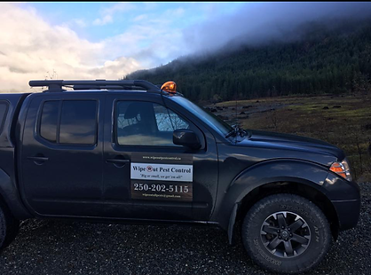 Pest Control Campbell River