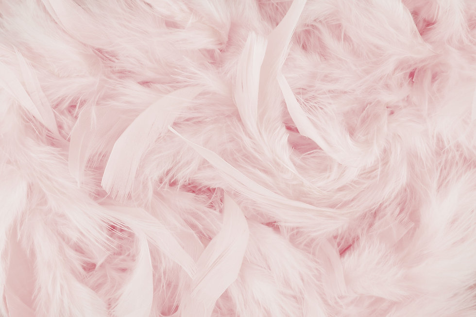 Pink Feathers_edited.jpg