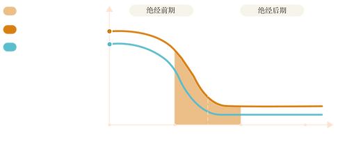 - Information Graph (Chi) - .png