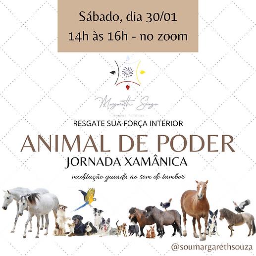 JORNADA XAMÂNICA.png