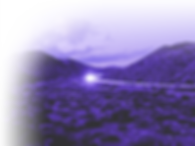 TheRisingPhoenix_fade1_edited.png