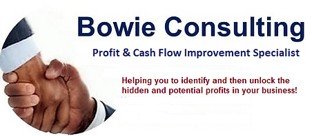 Bowie Consulting New Logo & Message 2019-20.png